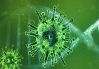 COVID19-CORONAVIRUS-SARS-COV-2