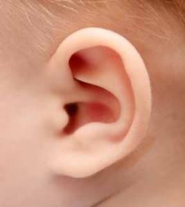 Síntomas de la infección de oídos