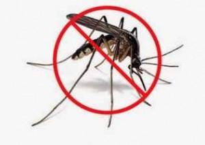 Síntomas del Chikunguña